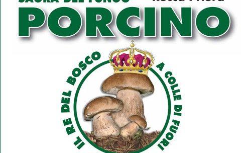 Mostra micologica a Colle di Fuori (Rocca Priora RM) – 2013