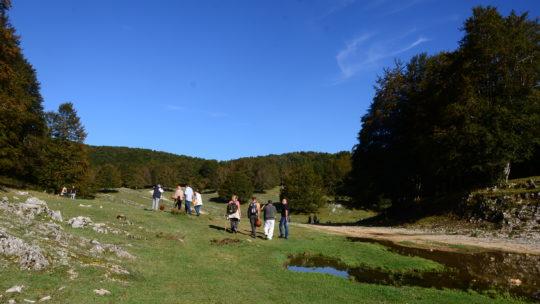 Report uscita micologica Parco di Ienne