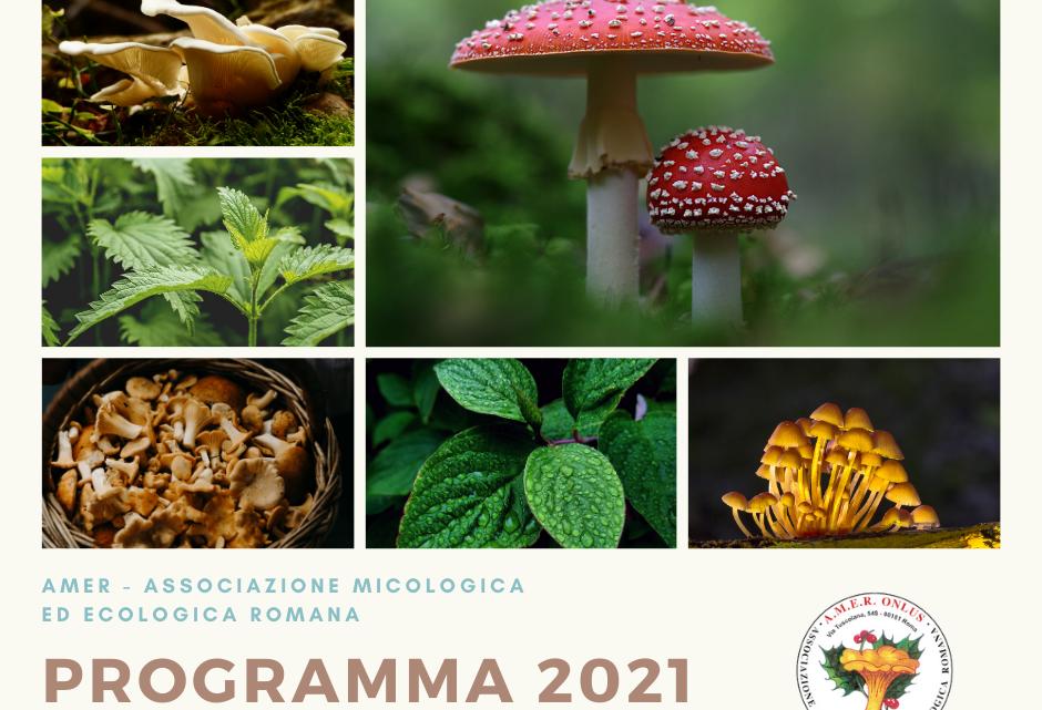 Pubblicazione programma 2021