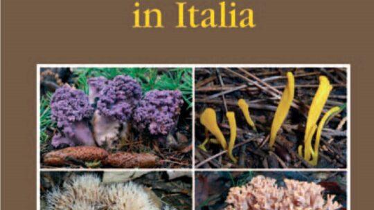 [Novità editoriali] I funghi clavarioidi in Italia, Franchi – Marchetti